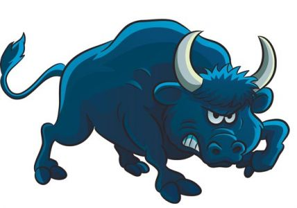 Bull animal farm vector design
