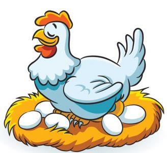 Cicken animal farm vector design