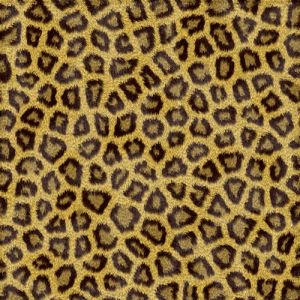 Leopard texture background