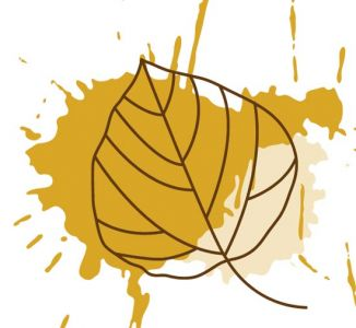 Autumn leaves vector design
