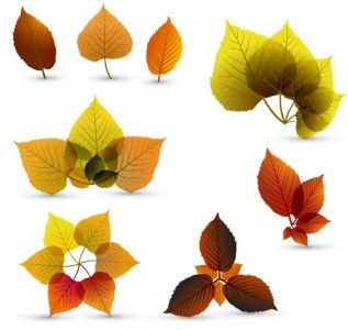 Autumn vector banner design