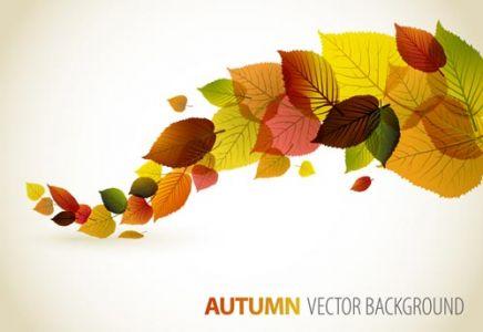 Autumn vector banner model