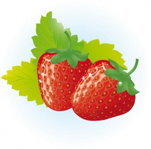 Berry design vector