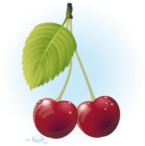 Berry design template