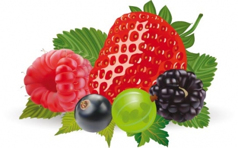 Berry design layout
