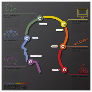 Human Head Learning Process System Connection Timeline Business Infographic