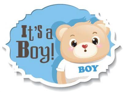 Cartoon teddy bear vector stickers