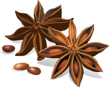 Star rice spice vector material