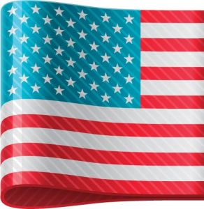 American vector flag label