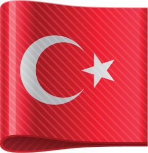Turkey vector flag label