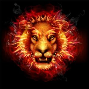 Creative fire vector effects