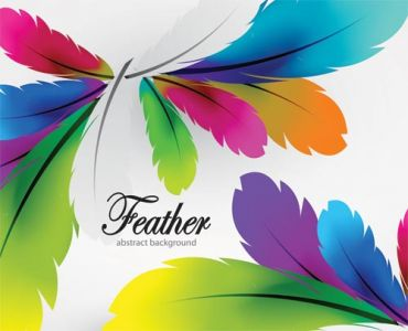 Delicate feathers vector with different colors