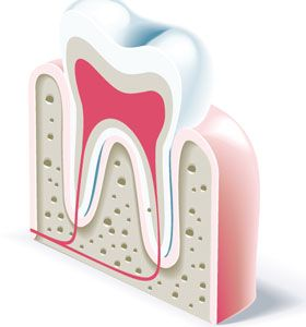 dental-icons-vector-elements1