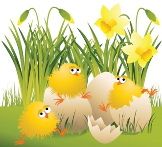 Easter chickens vector template