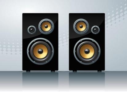 Speaker vector design