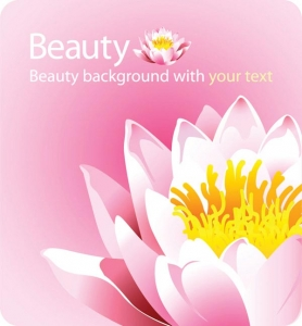 Elegant floral shapes vector backgrounds