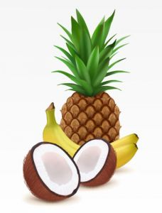 Ananas, babana and coconut fruit high detailed vector