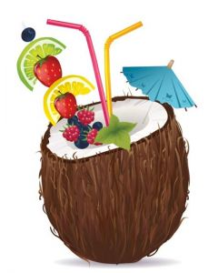 Half coconut fruit with umbrella high detailed vector