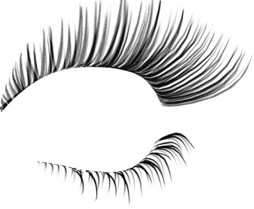 Eyelash photoshop template