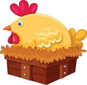 Chicken vector cartoon