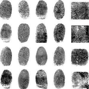 Fingerprint vector design