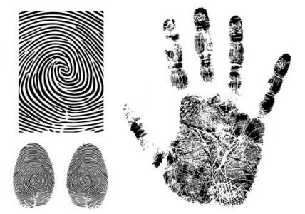 Fingerprint vector models