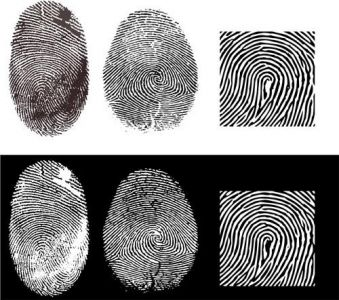 Fingerprint vector templates