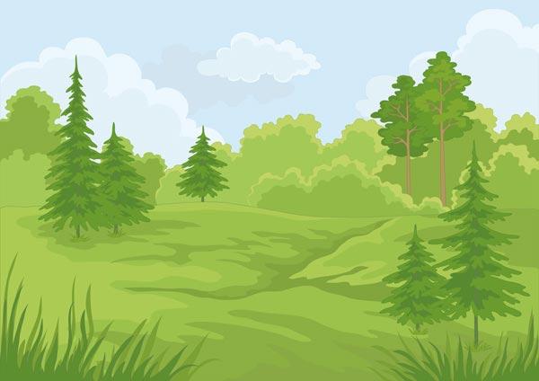 Landscape Illustration Vector Free: Forest Landscapes Vector Illustrations