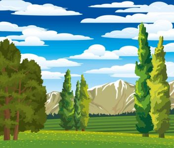Summer landscape with cypress and meadow