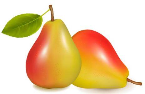 Fresh pear vector design