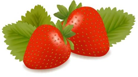 Fresh strawberries vector design