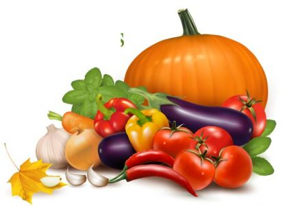 Fresh vegetables vector collection