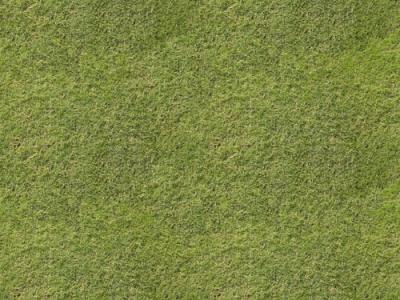 Grass textures background