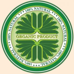 Green eco label vector design