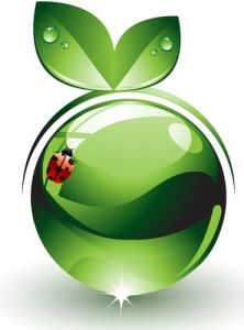 Green elements and icons vector