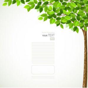 Green spring tree vector