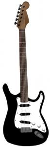 Guitar vector model
