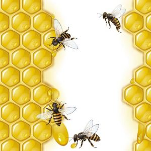 Honey cups and bees vectors