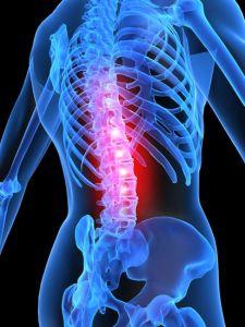 Human anatomy image design