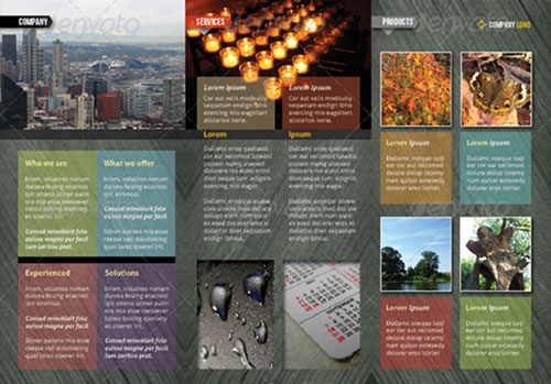 Indesign a4 tri fold brochure for Free indesign tri fold brochure template
