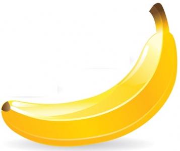 Juicy fruit vector