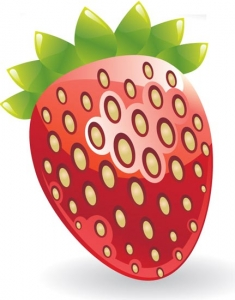 Juicy fruit layout