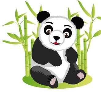 Jungle koala bear cartoon vector