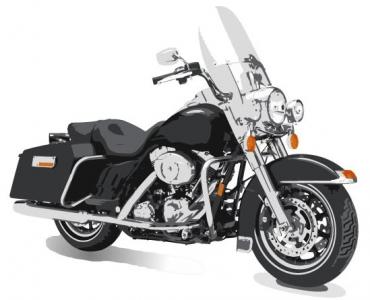 Moto vector model