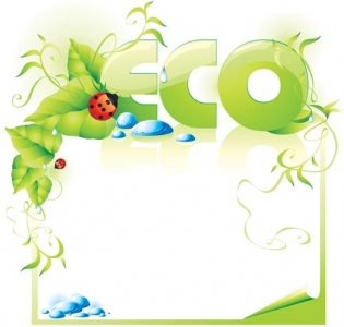 Natural green eco vector