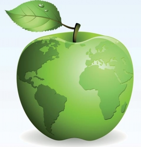 Natural green apple vector