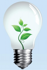 Natural green light bulb vector