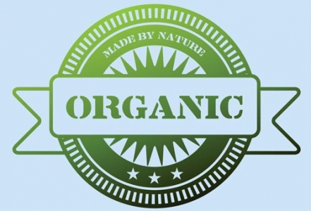 Natural green organic vector