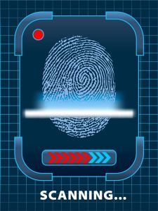 Network security vectors
