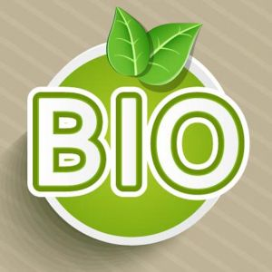 Organic food eco-labeling vector